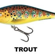 EXECUTOR_TROUT
